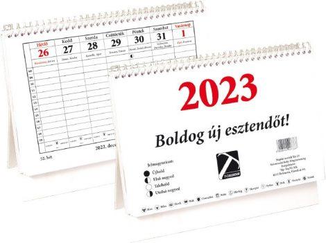 Asztali naptár 2021 TA23 20*14cm, közepes L01003T23/ 99731
