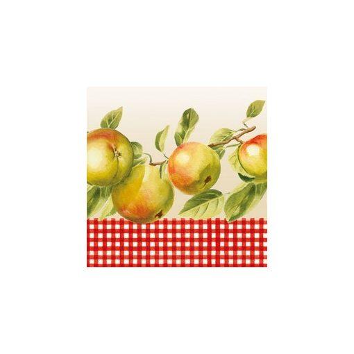 SDOG001801 Szalvéta, almák