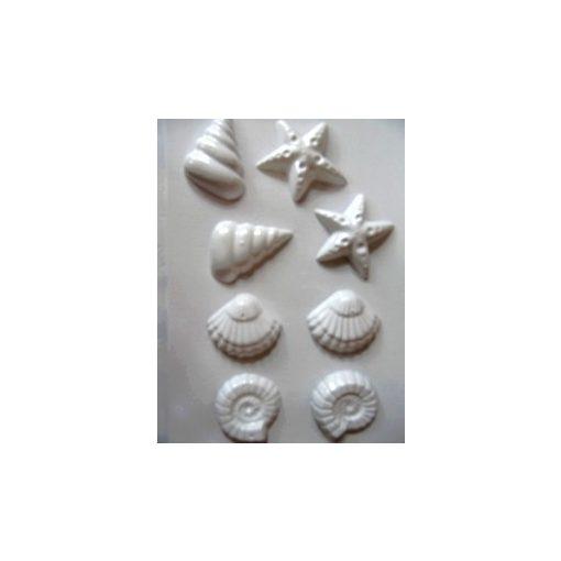 Gipszkiöntő 26*20cm, kagylók és csigák 113