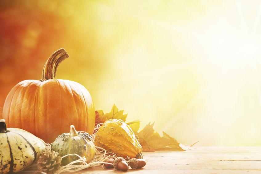 Varázsoljon őszi hangulatot otthonába!